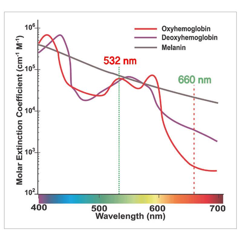 Absorbtia diferita a diverselor lungimi de unda in oxihemoglobina, deoxihemoglobina si melanina.